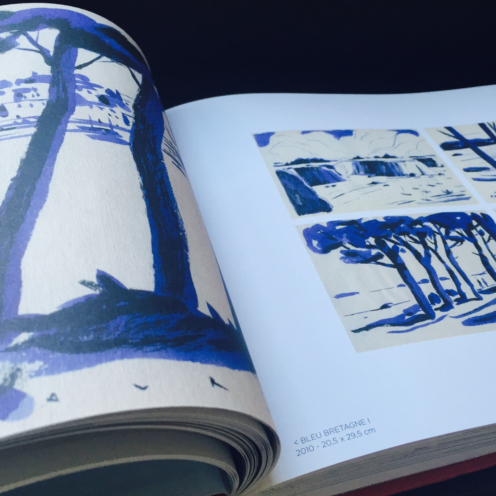 fouinzanardi -  fz_print.books_cheneavril3