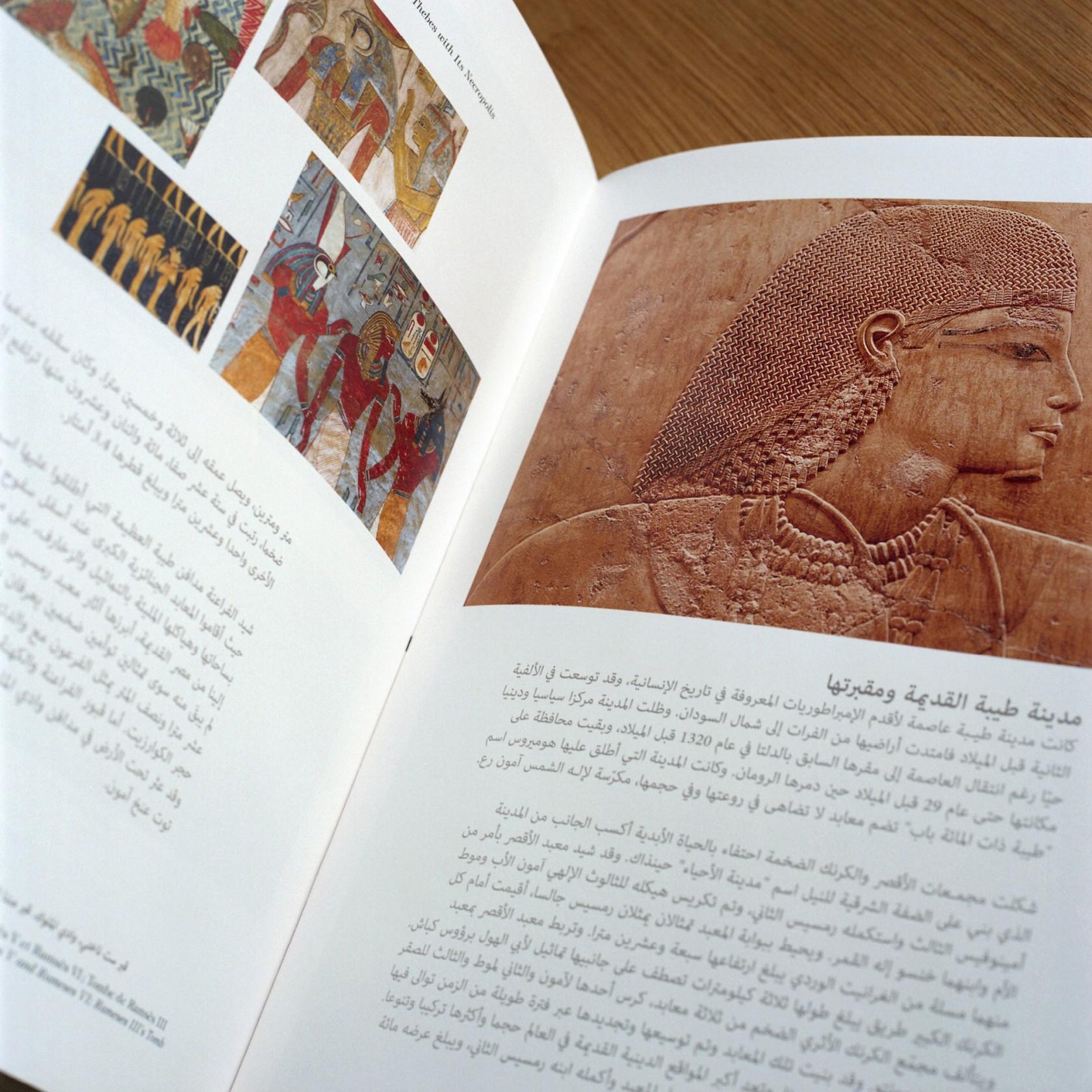 fouinzanardi -  fz_print.books_editionsgelbart3
