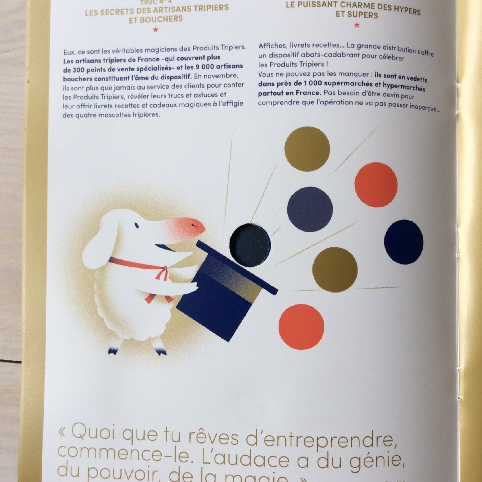 fouinzanardi -  fz_print_rp_com_trip20142