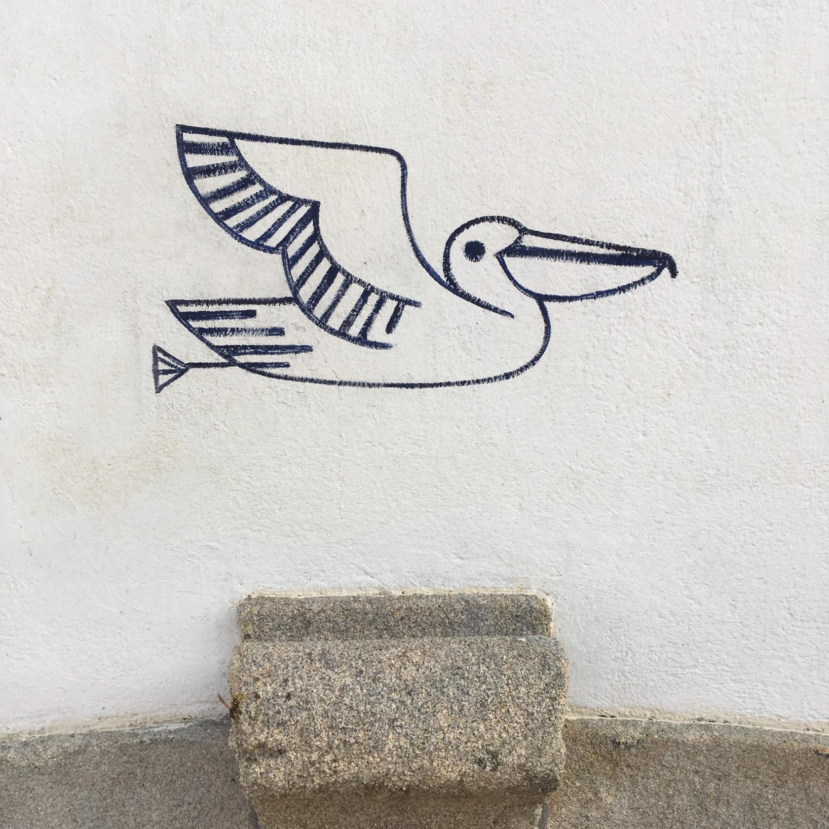 fouinzanardi -  IMG_4938